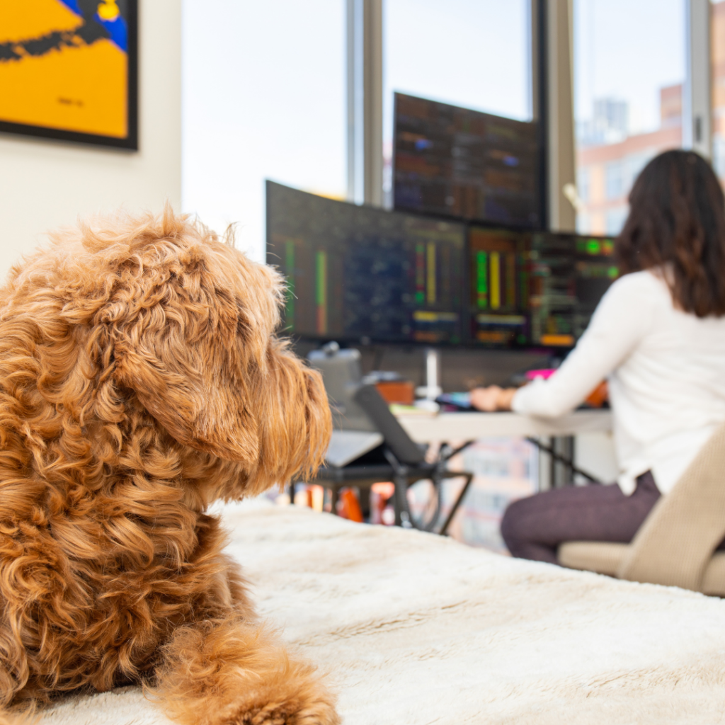 Woman and pet working from home